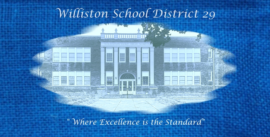 WILLISTON SCHOOL DISTRICT 29